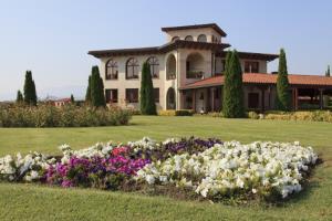 Visita a viñedo en primavera y bodega