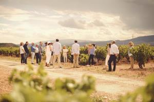 Marqués de Murrieta, Rioja desde 1852. El despertar del viñedo.