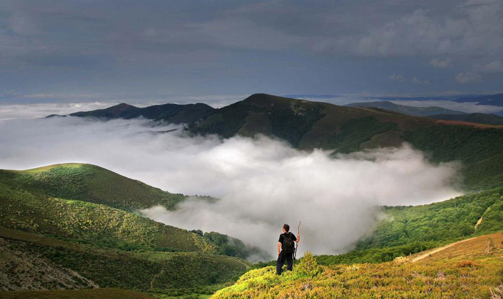 Naturaleza y paisajes
