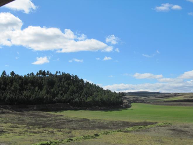 Bodegas Urbina
