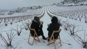 VINCANA DE INVIERNO, la yincana del vino