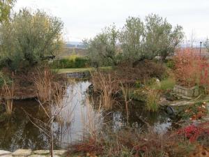 Veranos a pie desnudo. Visitas descalzas al Jardín Botánico de La Rioja