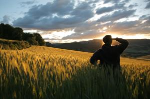 Experiencias de verano en La Rioja