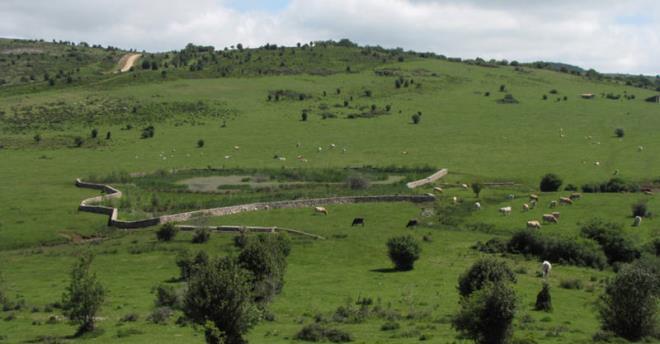 Valgañón
