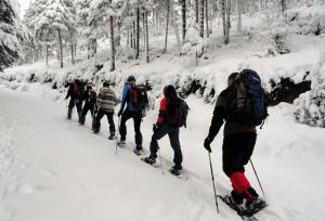 Excursiones guiadas con raquetas de nieve en Ezcaray