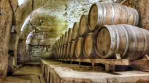 Volando por los viñedos de La Rioja