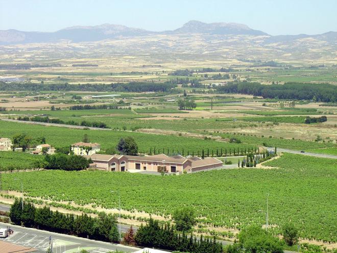 Bodegas y Viñedos del Marqués de Vargas
