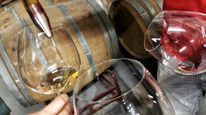 Wine Tour Primavera