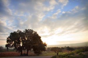 Mañanas de campo y turismo por La Rioja en primavera