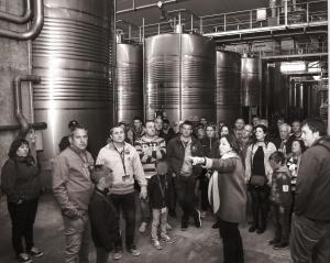 Vineyard, Home and Wine