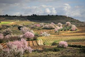Experiencias de primavera en La Rioja