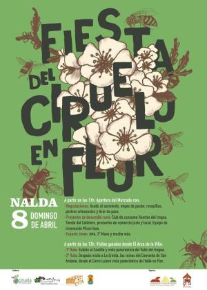 Fiesta del Ciruelo en Flor de Nalda