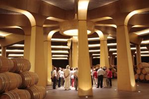 Visita guiada bodega y museo + degustación de vinos