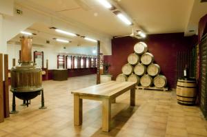 Al calor entre bodegas y vinos