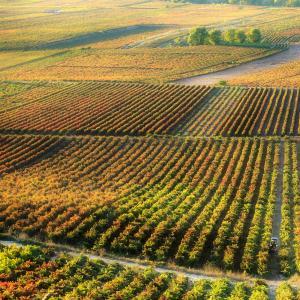 Rioja Alta Wine Route.