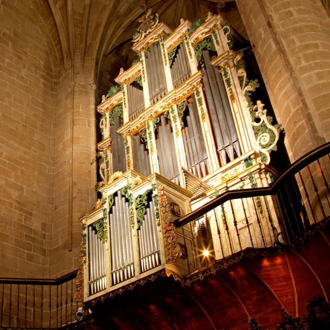 Concatedral de Santa María de la Redonda