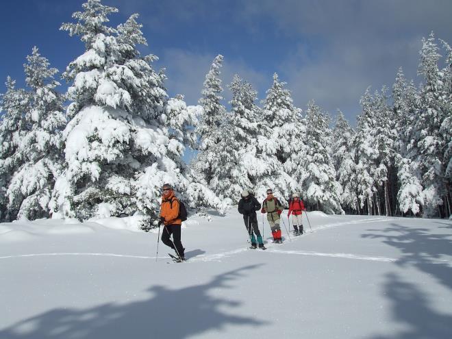 Recorrido con raquetas de nieve dentro del Parque Natural Sierra de Cebollera