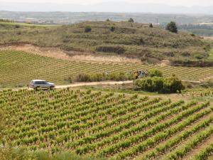 La ruta de las viñas en 4x4