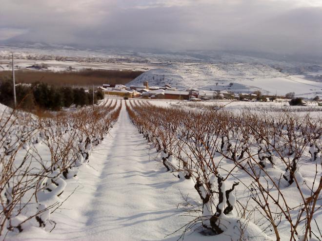 Hormilleja y Bodegas Ayagar. ¡Paisaje cautivador y buen vino!