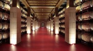 Experiencia sensorial en Bodegas Riojanas