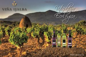 Descubre la viticultura ecológica en Viña Ijalba