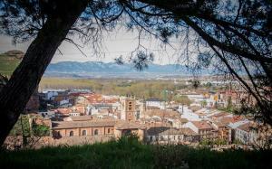Etapa 8, Nájera - Sto. Domingo de la Calzada