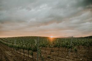 Fotografía de paisajes en La Rioja