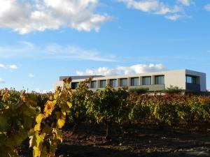 Experiencia de Campo y Menú Riojano