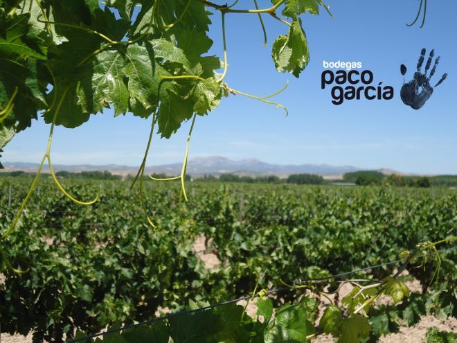Bodegas Paco García