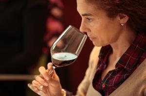 Curso de cata del mosto al vino