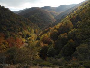 Sierra de la Demanda and Sierra de Urbión