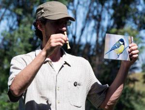 Los pájaros cantan y… nosotros les contestamos