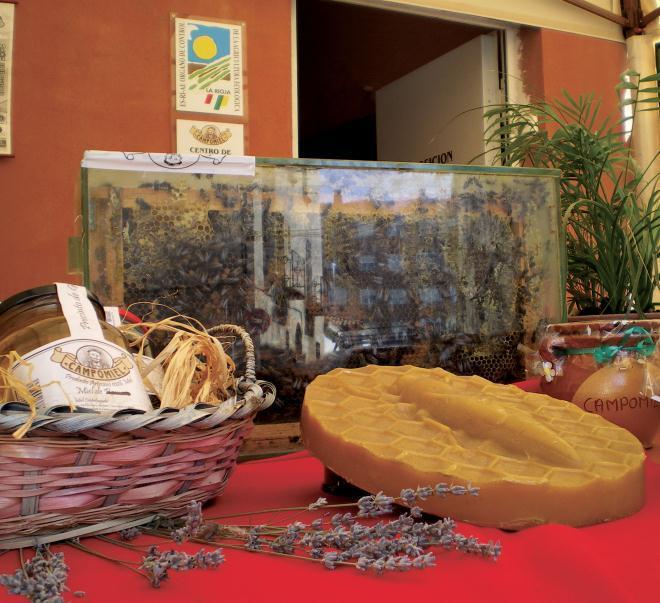 Visita al museo de la miel