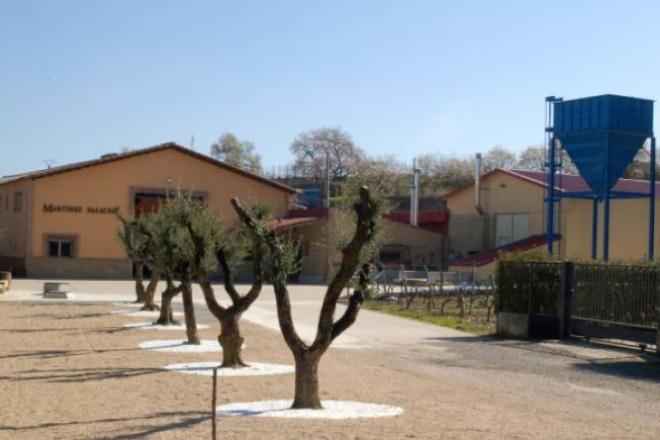 """Visita a la """"Almazara El Albergue"""""""