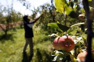 El foro del agro sostenible
