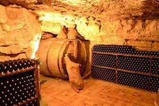 Salidas al viñedo, almuerzo en guardaviñas y visita a Bodegas Lecea con cata