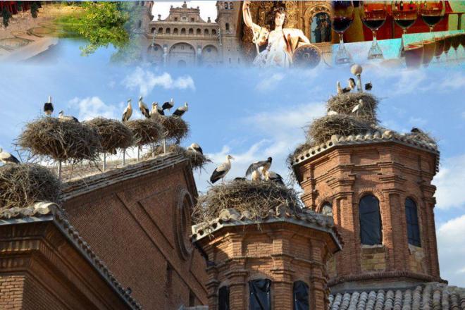 Día de la Cigüeña en Alfaro