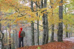 Ruta en BTT: Valle del Iregua