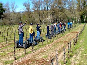Enoturismo, despertar del viñedo en segway