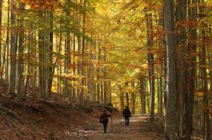119 actividades turísticas y culturales para vivir este otoño en La Rioja