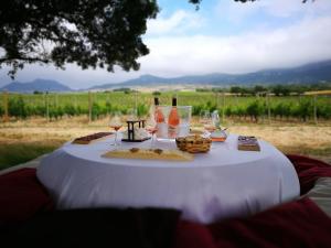 Recorrido + picnic por los viñedos en Segway