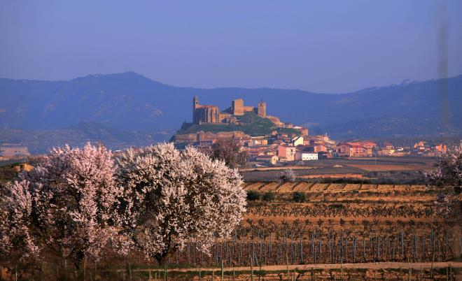 Semana Santa en La Rioja
