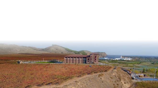 Bodegas y Viñedos Fernández de Manzanos
