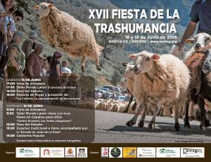 XVII Fiesta de la Trashumancia de Brieva