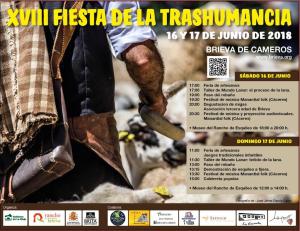 XVIII Fiesta de la Trashumancia de Brieva