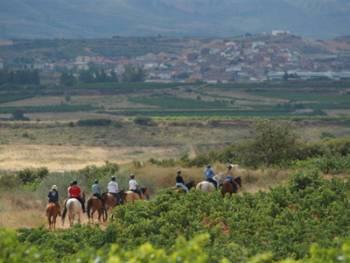Centro Hípico Navarrete