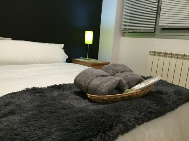 Apartamentos Riojania