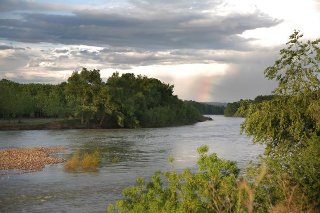 Programa de actividades en la Reserva Natural de los Sotos del Ebro