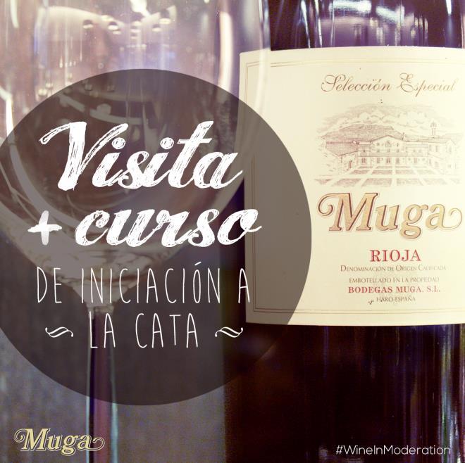 Visita guiada a Bodegas Muga + Curso de Iniciación a la Cata/ Visita a viñedo